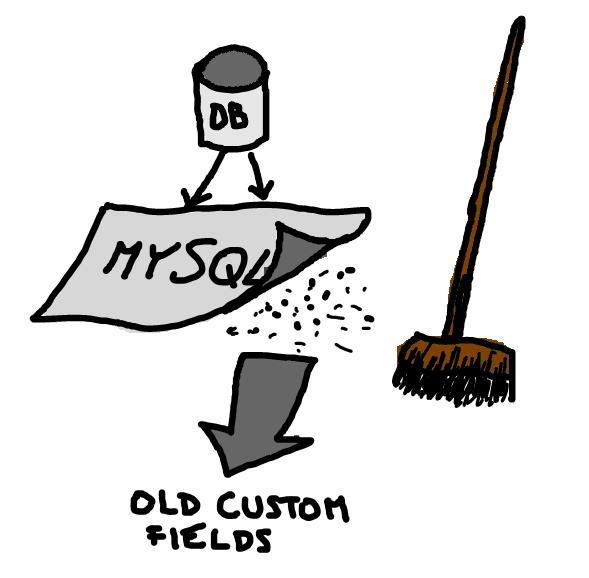 delete old custom fields from posts in wordpress